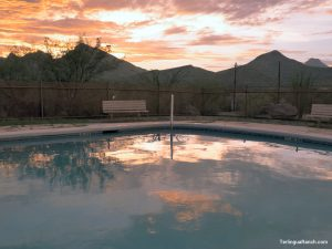 Terlingua Motels Swimming Pool