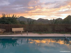 Terlingua Hotel Swimming Pool
