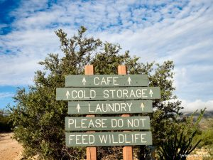 Terlingua Resort Amenities