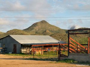 Terlingua Hotels Horseback Riding