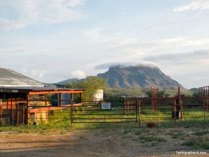 Big Bend Motel Horseback Riding