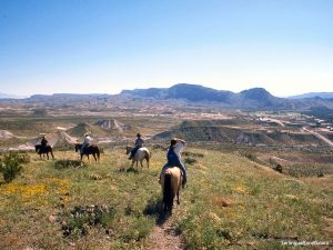 Big Bend Horseback Riding