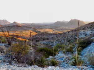 Christmas Mountains Texas Big Bend