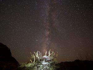 Gaze at the stars!