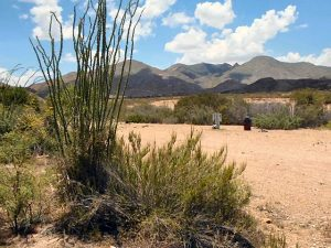 Big Bend Campgrounds | Private Tent Campsites | Horse Camp