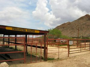 Terlingua Texas Horse Stable Corral Pen Paddocks Loading Chute